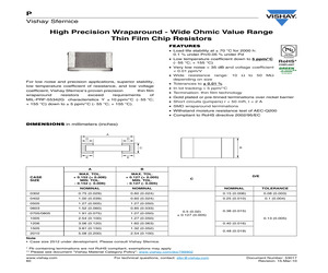 P0505K1010DN.pdf